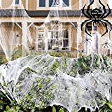 Ambolio Tela de Araña Halloween, Telarañas Decoracion, 100g Telarañas Elásticas, Arañas Telaraña de Araña, 30pcs Arañas Plásticas, Telaraña de Araña Espeluznante para Interiores.
