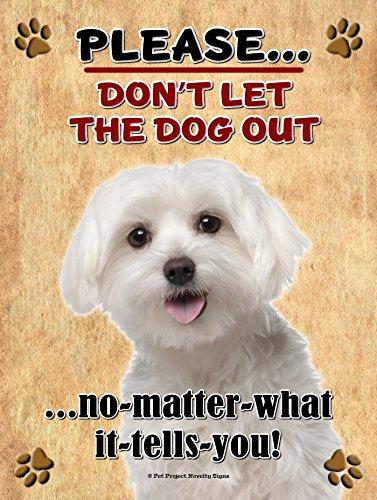 Maltees - Laat de hond niet uit wat het u vertelt - Nieuwe 9x6 Hoge kwaliteit Houten huisdier hond bord Plaque - Dit nieuwe huisdier teken moet worden gebruikt binnen. Onze nieuwigheid huisdier tekenen maken uitstekende geschenken!