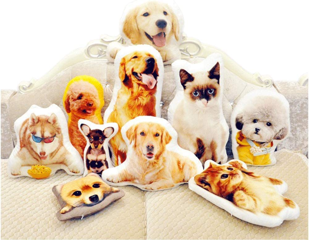 Customized Pillow - Duplex Printing Shape Photo Pillow with Pet, Idol, Face, and So On - Personalized Photo Gifts (16inches) : Home & Kitchen