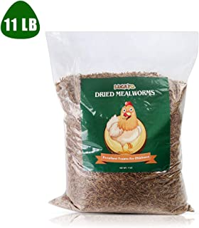 LUCKYQ Bulk Mealworms 11Lbs, High-Protein Dried Mealworms, 100% Non-GMO Mealworm Treats for Birds, Chickens, Turtles, Fish, Hamsters and Hedgehogs All Natural Animal Feed
