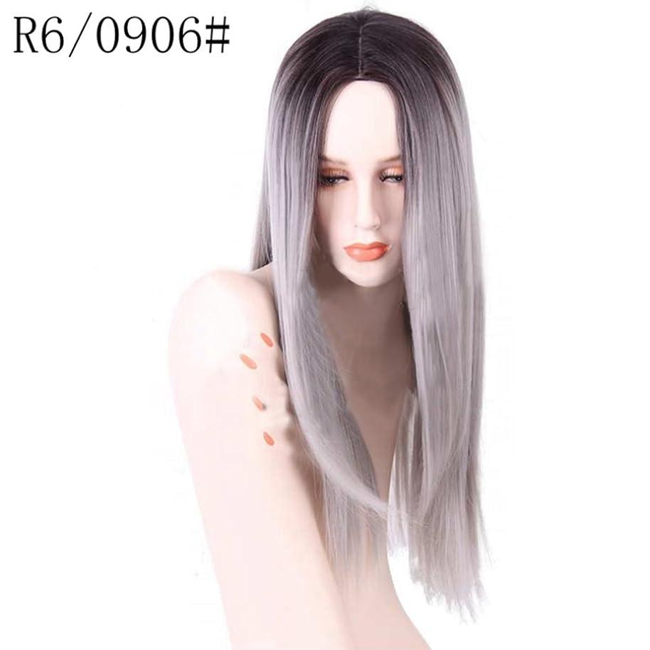 単に飢法医学Doyvanntgo 女性のための高温ウィッグフラットバンズウィッグの長いストレートヘア26inchの長さの自然な色のグラデーション (Color : R2/0906)