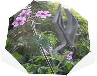 petunia nana compacta