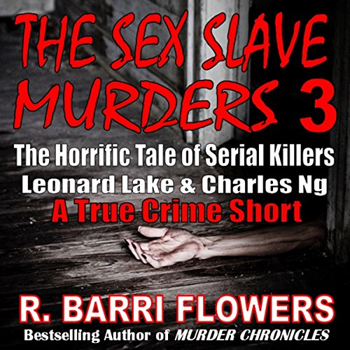 The Sex Slave Murders 3 audiobook cover art