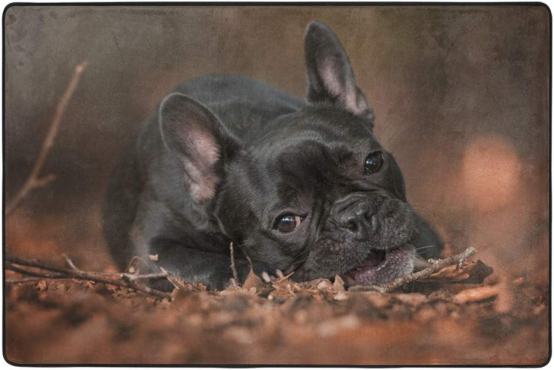 Little Black Puppy Dormat Decor Indoor Outdoor Welcome Door Anti Skid Mat Rug for Home Office Bedroom