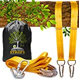Safe Tree Swing Hanging Kit (Set of 2) - 10ft Long Straps with Two Alloy Carabiners and 2000 Lb Breaking Strength - Easy & Fast Installation for All Types of Swings and Children