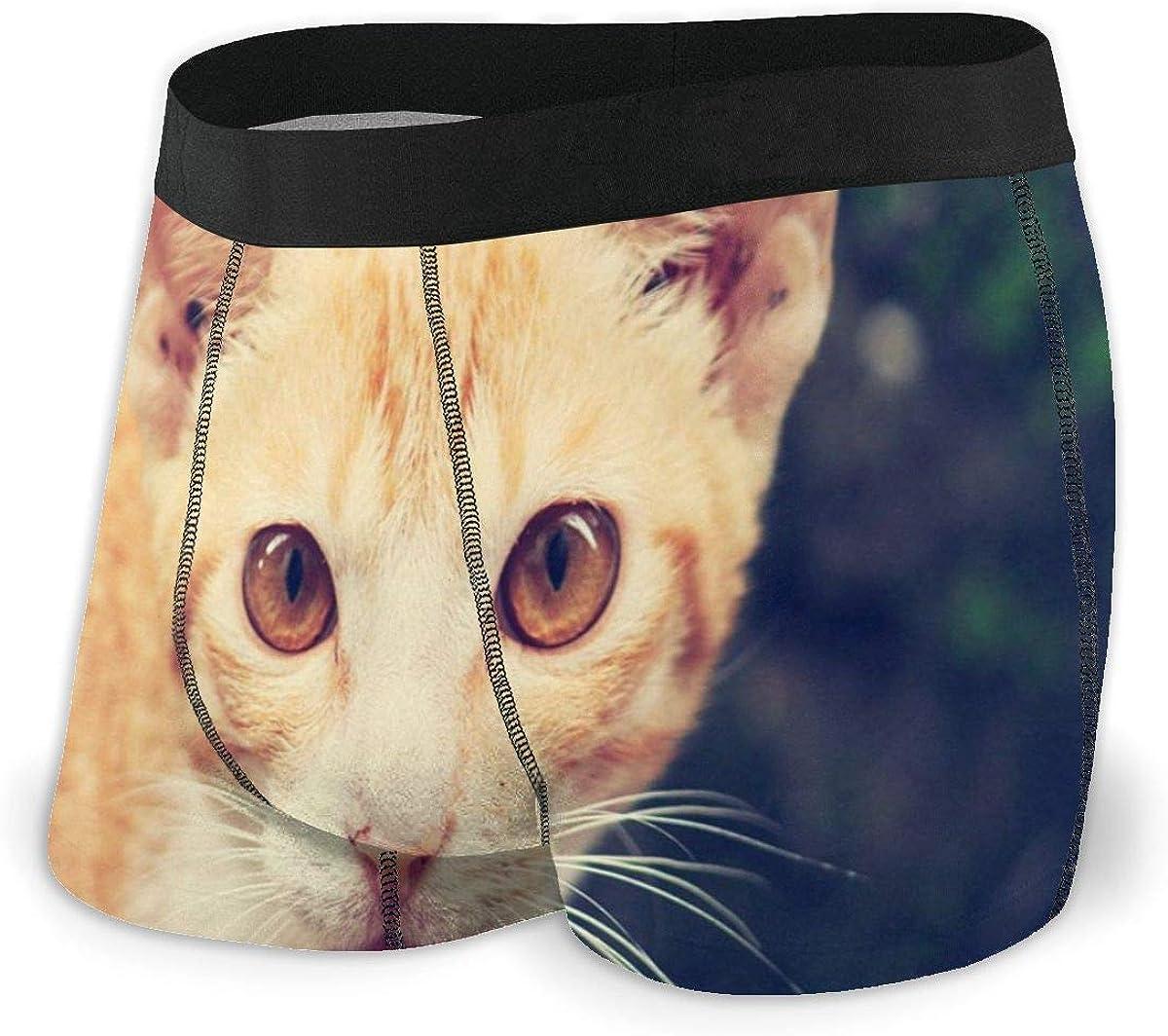 Mens Boxer Briefs Beautiful Cute Funny Cat Boys Trunks Underwear Short Leg Breathable Man