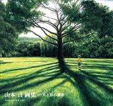山本貞画集―光と影の讃歌