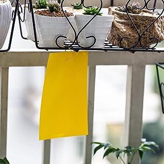 15 x 20 cm Trampas adhesivas para moscas, insectos, piojos (10 unidades)