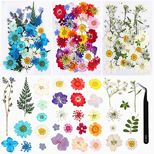 114pcs Dried Flowers for Resin Molds - Natural Real Dried Pressed Flowers Set with Tweezers, Colorful Resin Flowers for Jewelry Making, DIY Candle, Bookmark, Face Makeup, Resin Mold, Scrapbook