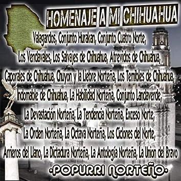 Homenaje a Mi Chihuahua (Popurri Norteño) Hay Chihuahua / las Calles de Chihuahua / Viva Chihuahua