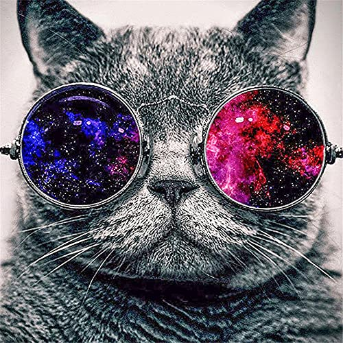 cuadros diamantes 5d grande gafas de sol de gato diamond painting kit completo adulto/niños Cristal Rhinestone Resina Bordado Craft Punto de Cruz Art Hogar Pared Decoración Round Drill 30x30cm