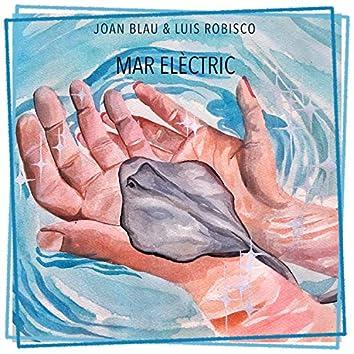 Mar elèctric