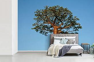 Fotobehang vinyl Afrikaanse baobabs - Fotobehang Afrikaanse baobabs - Een alleenstaande Afrikaanse baobab met een strakbla...
