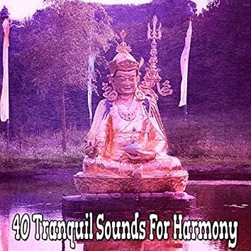 40 Tranquil Sounds For Harmony