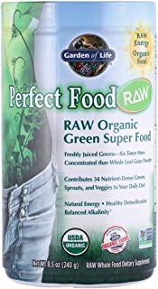 Garden of Life Perfect Food Raw Green Super Food, 240 g