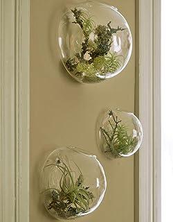 مجموعه ای از 3 حباب دیواری Terrariums گیاهان داخلی گلدان های گلدان شیشه ای مخصوص گلدان های مخصوص گلدان های دیواری برای ساکولنتت گیاهان هوا دکوراسیون دیوار برای اتاق نشیمن Sunroom