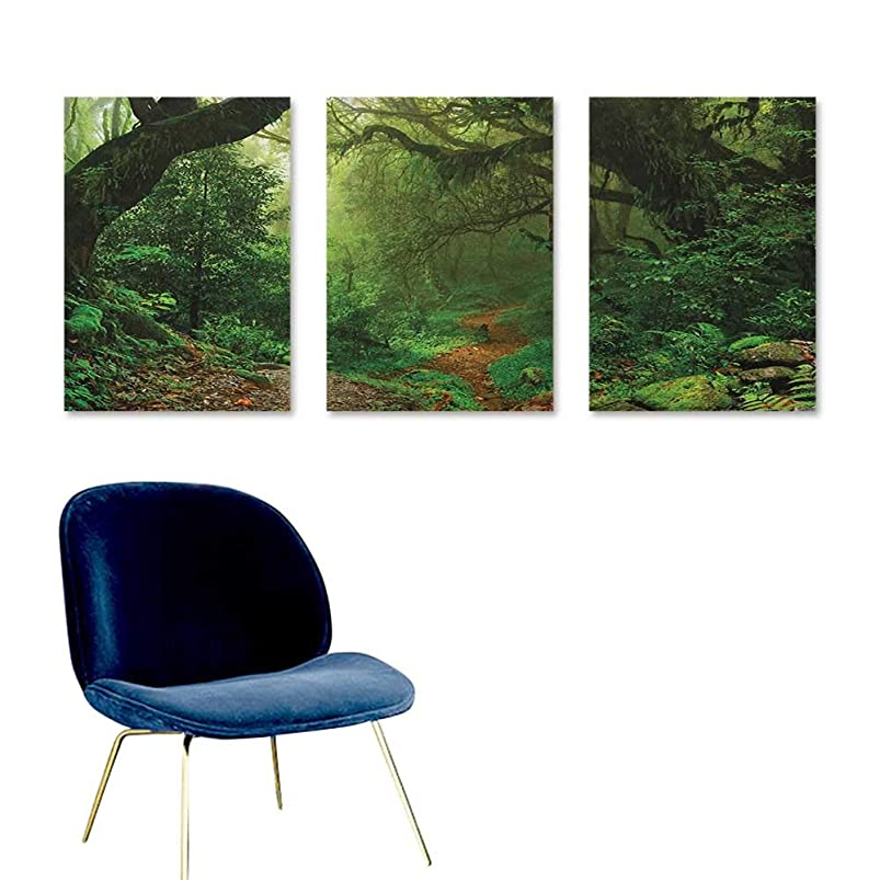 Agoza Rainforest Abstract Oil Paintings Forest in Nepal Touristic Trekking Branches Misty Road Fresh Air Outdoors Theme for Home Decoration Wall Decor 3 Panels 16x31inch Green Brown npvtlmsi422861