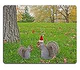 In gomma naturale, gioco Luxlady Mousepads Eating lo scoiattolo rosso cappello di Babbo Natale seduto sul prato ID 25455863 IMAGE
