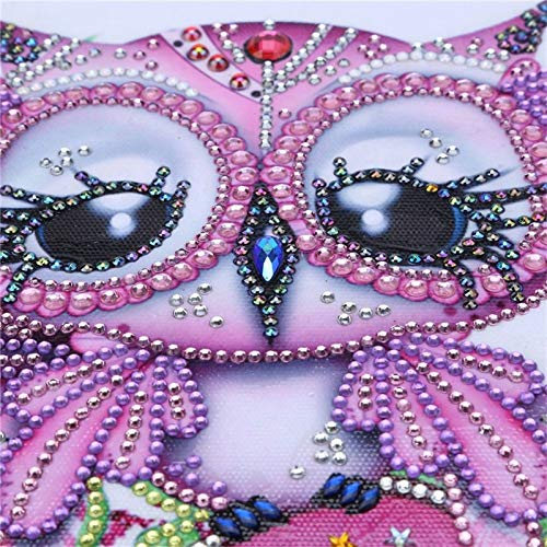 5d Diamond Painting Kits for Adults Kids,Full Diamond Embroidery Rhinestone Cross Stitch Arts Craft Pink Owl with Rhinestones 11.8x11.8 in by Greatminer