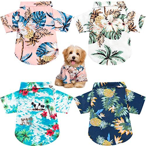 Cheap dog clothes with free shipping _image4