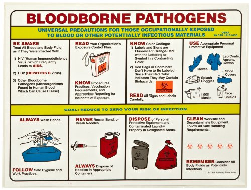 Brady PS125E 18' Height, 24' Width, Laminated Paper, Black, Red, Blue, Yellow On White Color Prinzing Biohazard Safety Poster, Legend 'Bloodborne Pathogens Universal Precautions For Those'