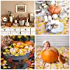 K KUMEED Little Pumpkin Party Decorations, Little Pumpkin Banner Cake Topper Little Pumpkin Maple Leaf Confetti Latex Balloons for Thanksgiving Baby Shower Birthday Party Decorations … #5