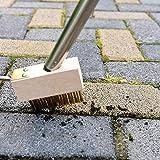 Strumento per la rimozione del muschio da crepe sul ponte Spazzola metallica per erba erbacce anche fughe articolazioni diserbante