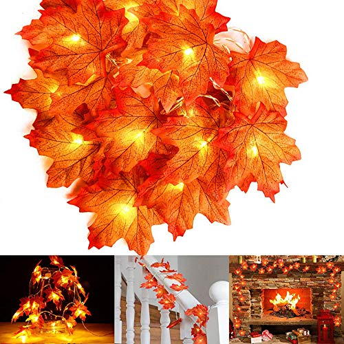 Fall Maple Leaves String Lights Thanksgiving Decorations Lights Total 20 Ft & 40 LED with Twinkling Modes for Holiday Party Home Indoor Décor-2 Pack