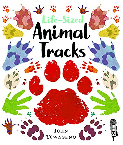 Life-Sized Animal Tracks