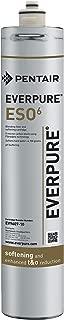 Best everpure ev9607-10 Reviews