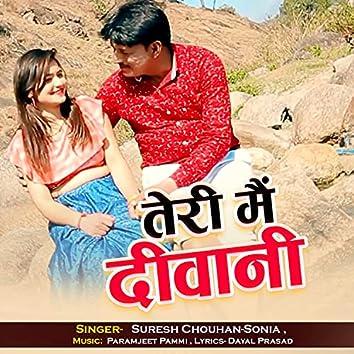 Teri Main Deewani (Hindi)