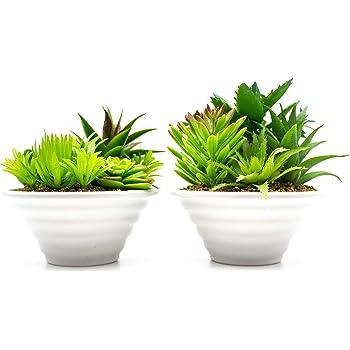 YQing Plantas Suculentas Artificiales Plastico Maceta Decorativas ...