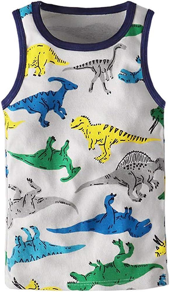 Huaer) Toddler Boys' 2-3 Pack Tank Tops (Dinosaur, 6T)