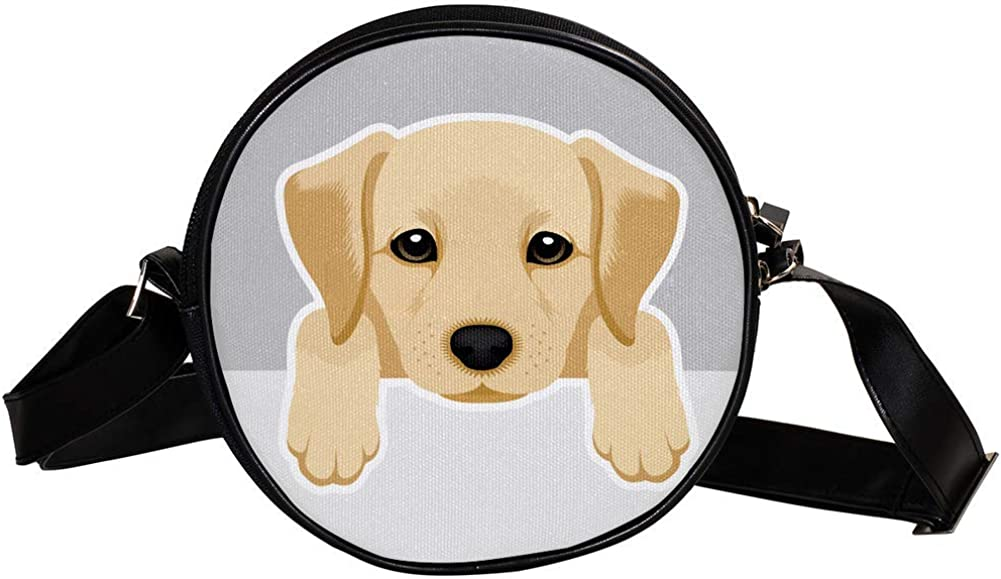 Coin Purse For Kids Baltimore Mall Cartoon Labrador Girl Crossbody Mini Time sale Dog Bag