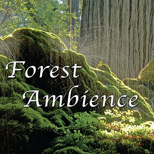 Natural White Noise - Music for Meditation, Relaxation, Sleep