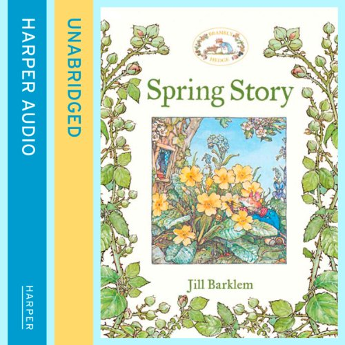 Spring Story audiobook cover art