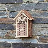 CKB LTD Petit hôtel en bois naturel pour abeilles coccinelles maison en bois abri jardin nid jardin maison extérieur maison habitat extérieur maison extérieur maison habitat petite taille 16x9x23cm