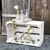 Glaskönig Vasen-Set, Geschenkset auf einem Holzbrett | Kleine Mini Blumenvasen als Tischdeko mit 5 Glasflaschen | Mini Vasen Set für einzelne Pflanzen oder Kunstblumen ganzjährig als Dekoration - 2