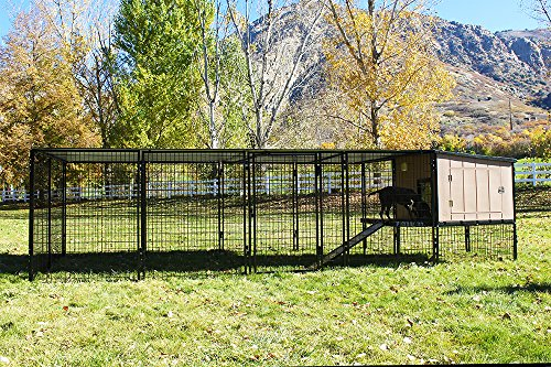 4' X 4' K9 Kennel Castle House With 4' X 16' Run with Metal Cover-Basic