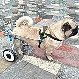 Carrellino per Cani Disabili Piedi/Gambe Posteriori Riabilitazione, Sedia a...