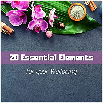 20 Essential Elements for your Wellbeing