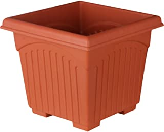 Minerva Naturals Plastic Square Planter (12 inch, Brown) - Pack of 6