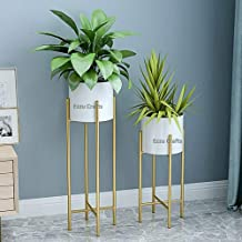 Ezzu Crafts Set of 2 Modern Plant Stand- Set with Tall Metal Stand, Decorative Standing Flower Succulent Pot Holder, Indoo...
