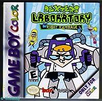 Dexter's Lab: Robot Rampage / Game