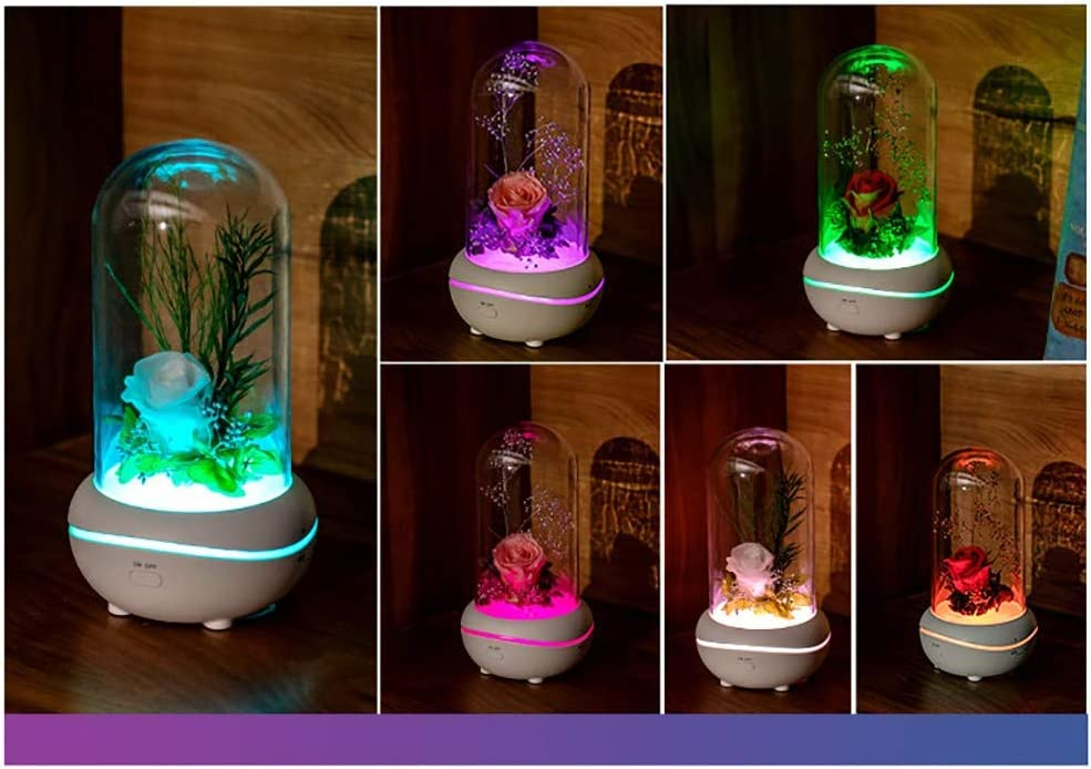 BONJIU Romantic Eternal Flower Aroma Lamp Rose Night Light Artificial Silk Flowers with USB Led Fairy String Lights in Glass Dome Gifts for Valentines Day Anniversary Wedding
