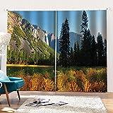 WAFJJ Cortinas Opacas para habitación Bosque montañoso Infantil con impresión fotográfica 3D,diseño Interior,Juego de 2 Paneles Tamaño:2x140x175cm(An x Al)