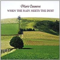 When the Rain Meets the Dust