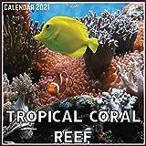 Tropical Coral Reef Calendar 2021: Official Tropical Coral Reef Calendar 2021, 12 Months