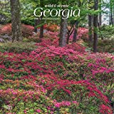 Georgia Wild & Scenic 2020 12 x 12 Inch Monthly Square Wall Calendar, USA United States of America Southeast State Nature (English, Spanish and French Edition)