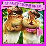 Avanti Cheeky Chipmunks 2017 Square
